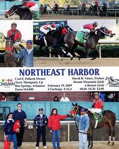 NORTHEAST HARBOR - 2/19/2009
