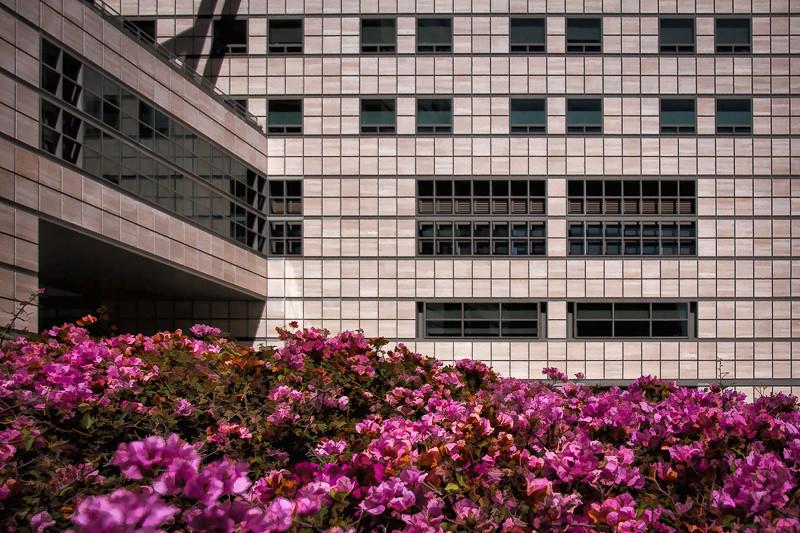 March 18 - UCLA Medical Center.jpg