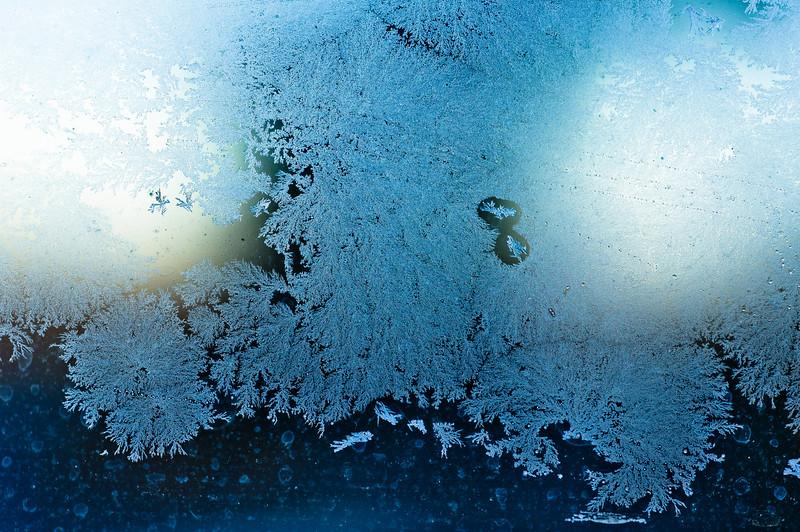 Snowflower VI