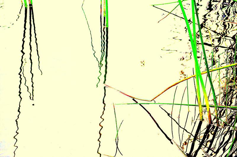water wiggle 7-15-2012.jpg