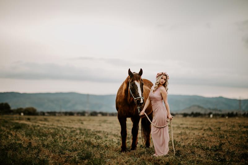 horsey-155.jpg
