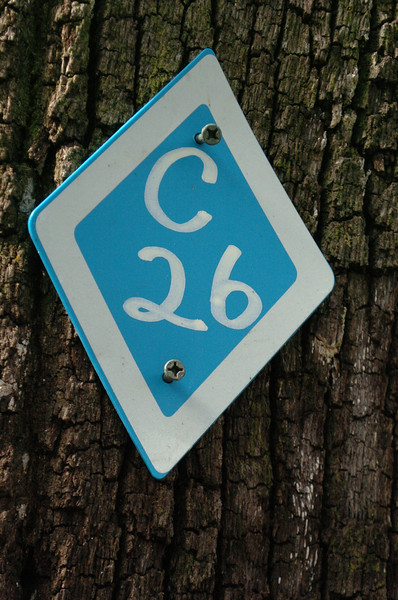 C26 is just west of this work segment.
