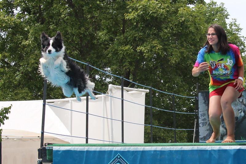 2015.8.6 Winnebago County Fair Dock Dogs (52).JPG