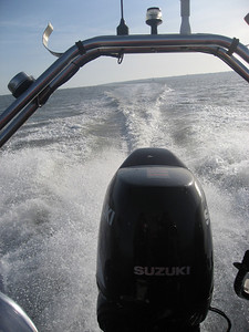 Day On the Rib