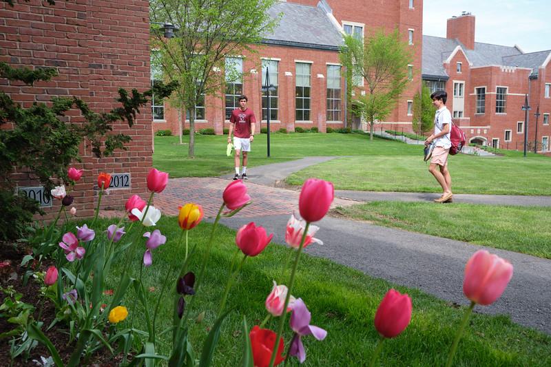 Spring Day May 7