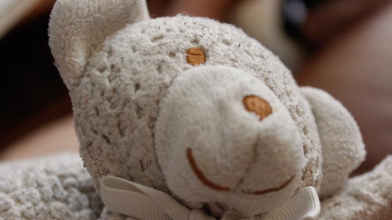 130602, Mr. Bear.jpg