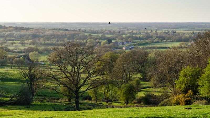 Oxfordshire fields