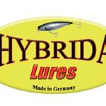 Logo-Hybrida-240x160.jpg