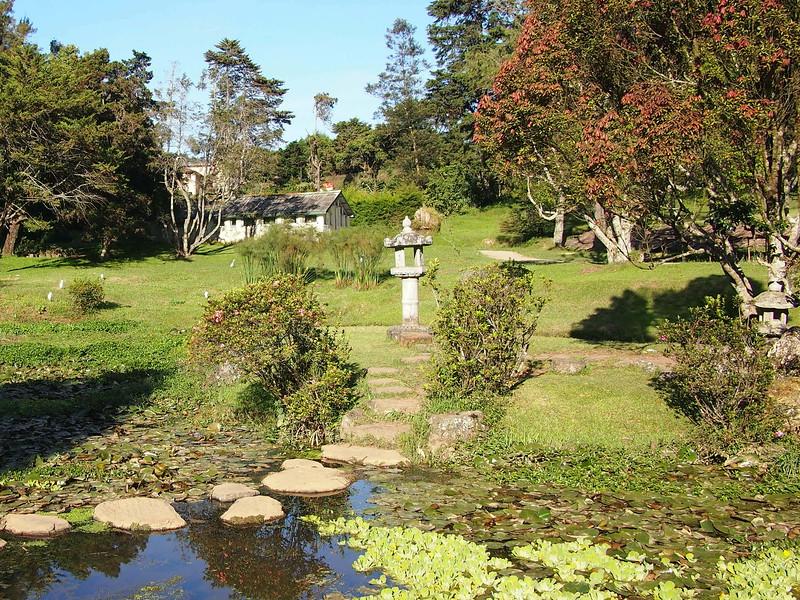 P2168527-japanese-garden.JPG
