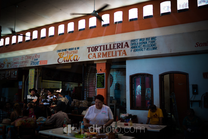 tequila-11-2.jpg