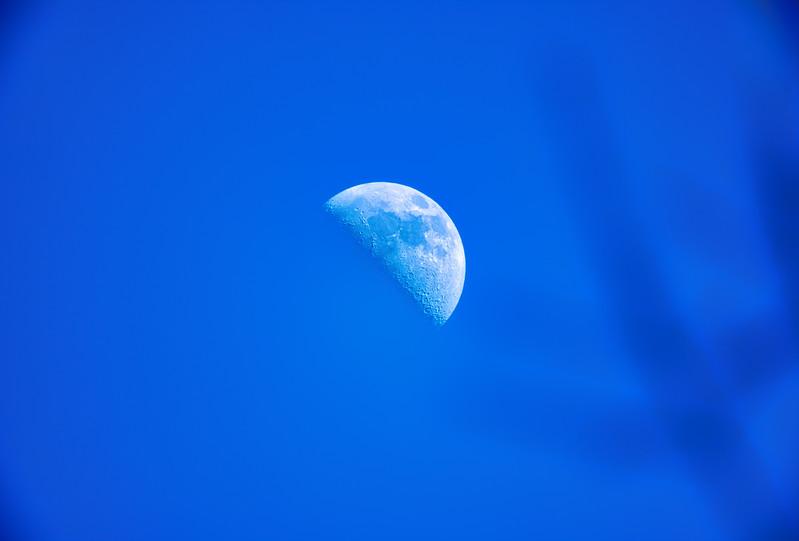 Moon 2 lg-1.jpg