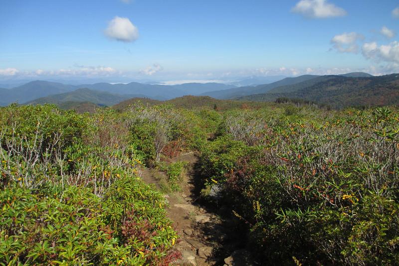 Art Loeb Trail -- 5,940'