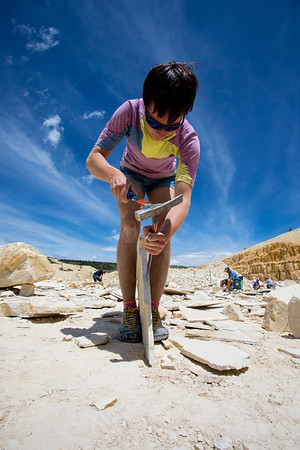Fossil Hunting in Wyoming