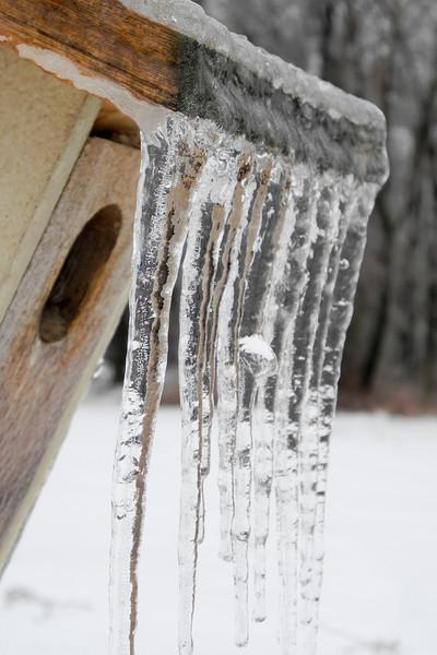 IceStorm-108.jpg