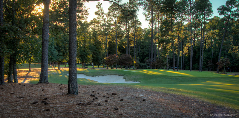 PINEHURST #2. Late-afternoon sunlight through the trees.