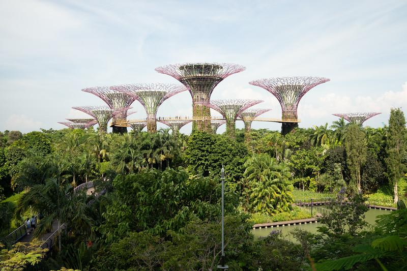 Singapore-19-084.jpg