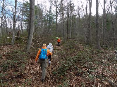Hiking in Shenandoah Valley