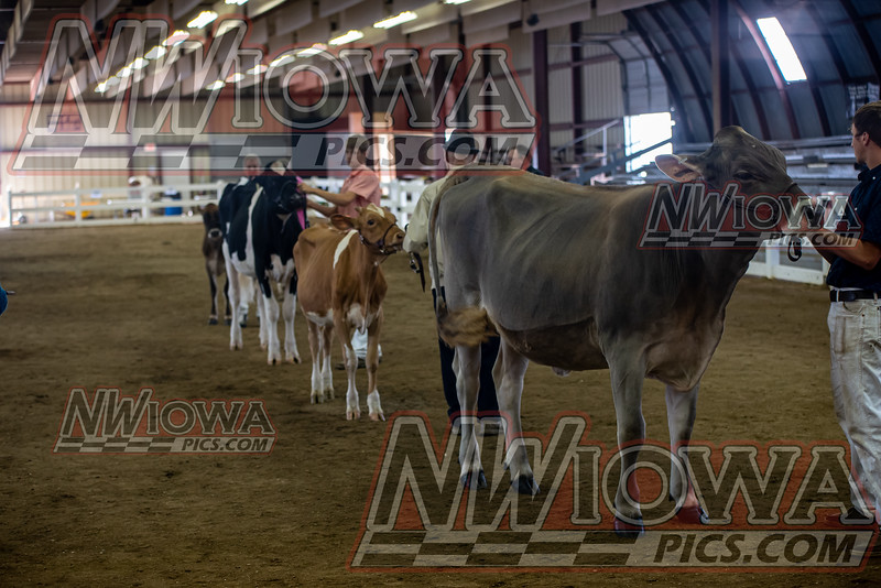 Clay County Fair - Day 7 - 9 - 17 - 21