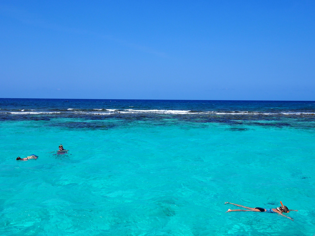 Best Snorkeling in the Caribbean - Grand Cayman