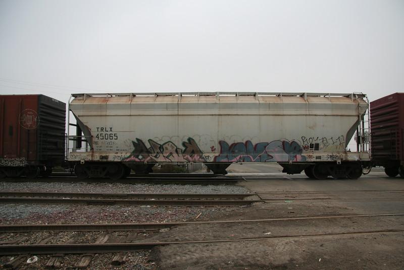 TRLX45065.JPG