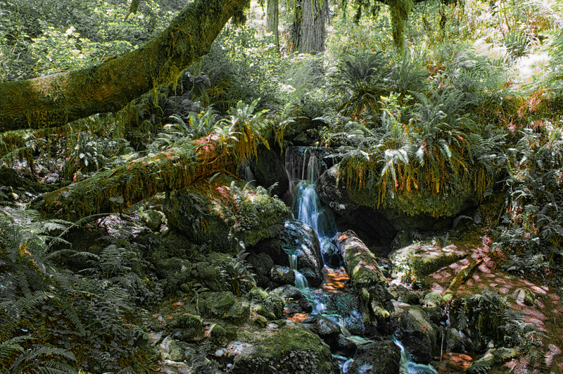 Trillium Falls.jpg