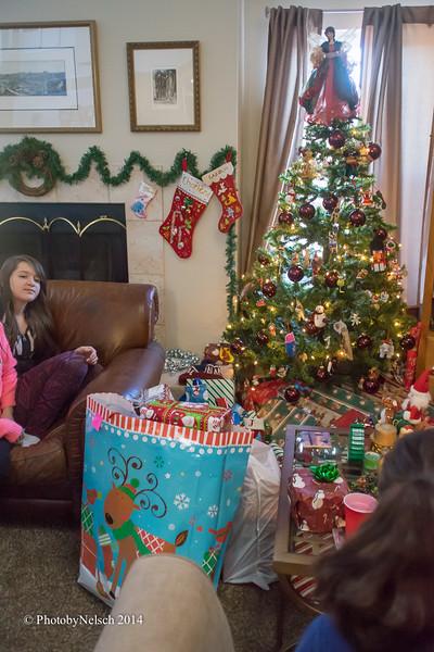 Christmas 2014-104.jpg
