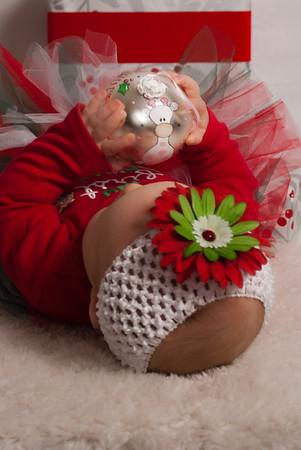 Vander Laan Christmas