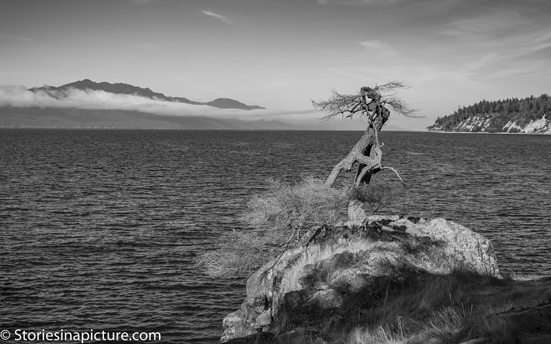 Buccaneer Bay-4342.jpg