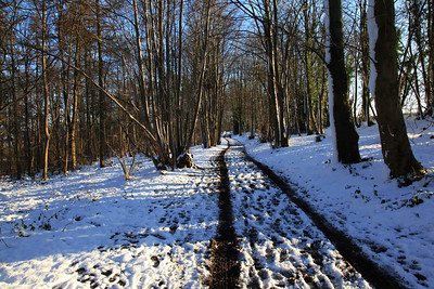 Winter in the Chess Valley