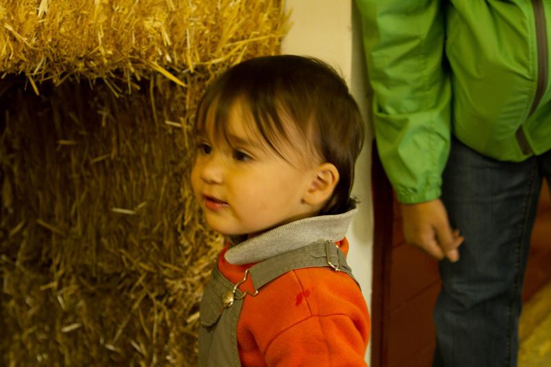 PumpkinPatch2012-179.jpg