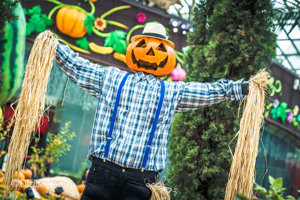 Gardens by the Bay - Autumn Harvest Floral Display - Scarecrow Pumpkin