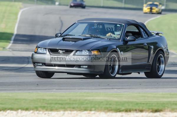 KE 18 Gray Mustang