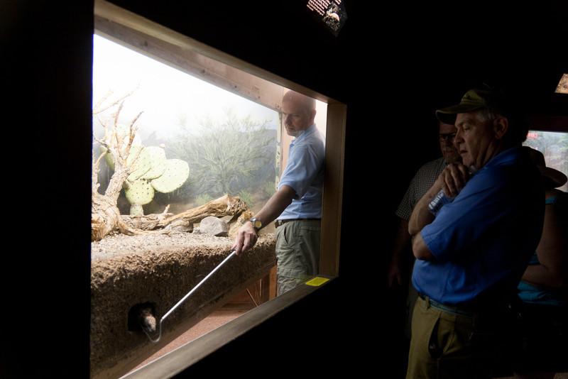Sonora Desert Museum. http://www.desertmuseum.org/