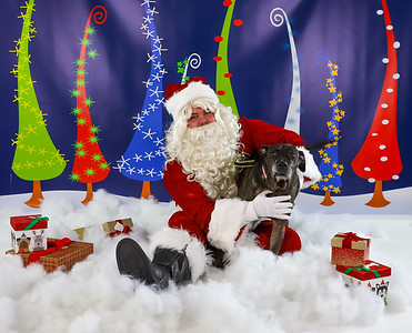 Brindle - Pet Pics with Santa