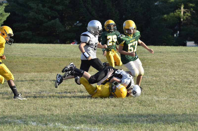 Wildcats vs Raiders Scrimmage 055.JPG