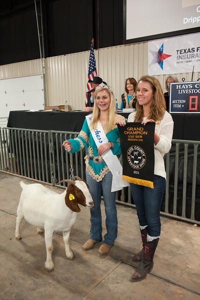 Hays County Show-9811.jpg