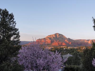 03-2017 Arizona Landscape