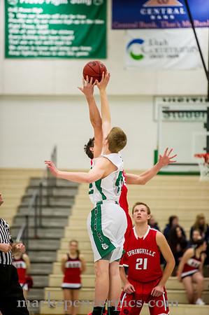 Basketball SHS v Provo 1-14-14