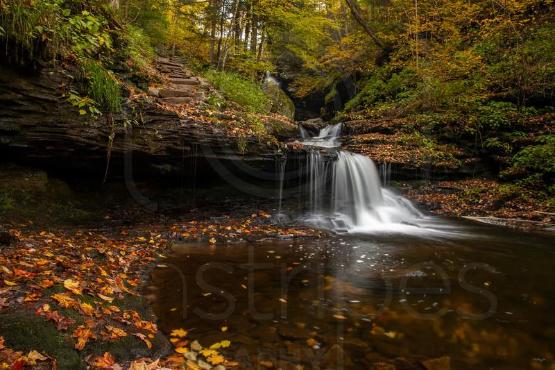 Ricketts Falls & Endless Mountains