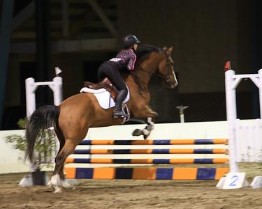 2015 GHJA Finals - Hillmar Horses