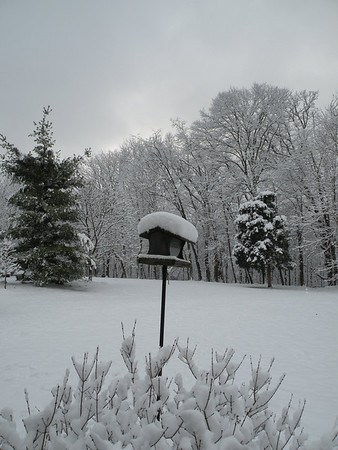 winter 2012-3