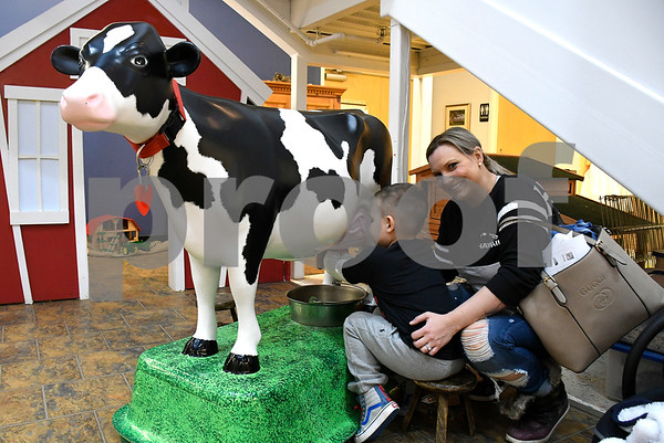 2/10/2018 Mike Orazzi | Staff Aiden Maloid,4, and his mother Nikki milk a cow while at the Imagine Nation, A Museum Early Learning Center, during a Happy Hearts Scavenger Hunt Saturday morning in Bristol.