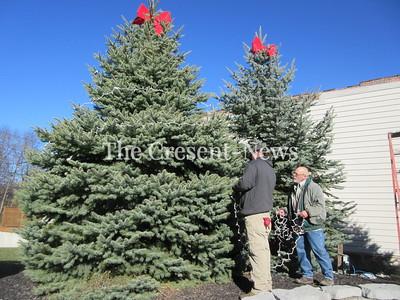 11-19-17 NEWS Tree decoration