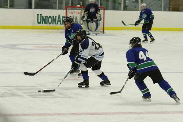 Slap Shot and Shop Women's Hockey at Union Arena