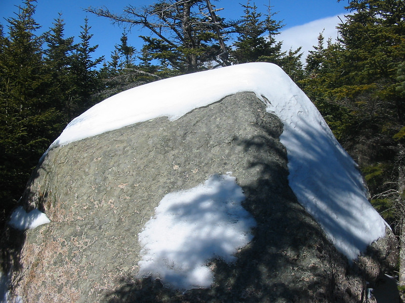 The summit of Wonalancet Hedgehog.jpg