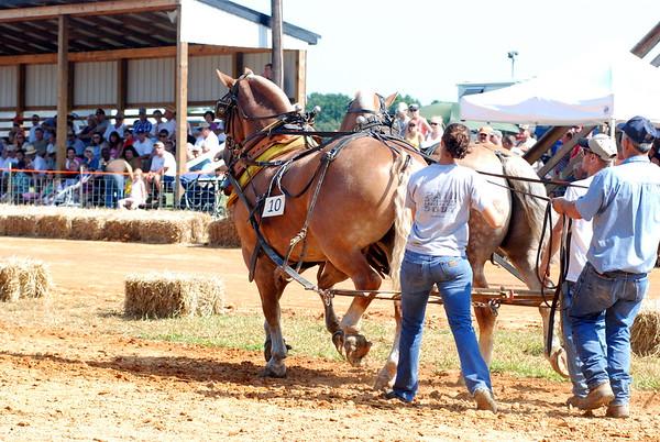 8/1/2009 Horse Pull at Bowles Farm - ALL TEAM 10