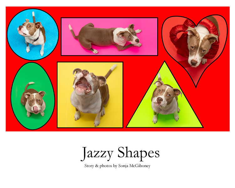 Jazzy shapes cover .jpg