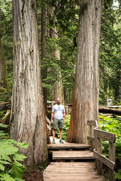 Hemlock Grove Trail