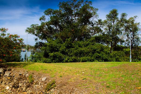 Gladesville : Banjo Paterson Park