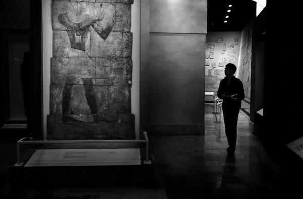 Museum muse